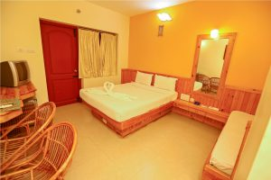 India_Tiruvannamalai_Hotels_13533_142